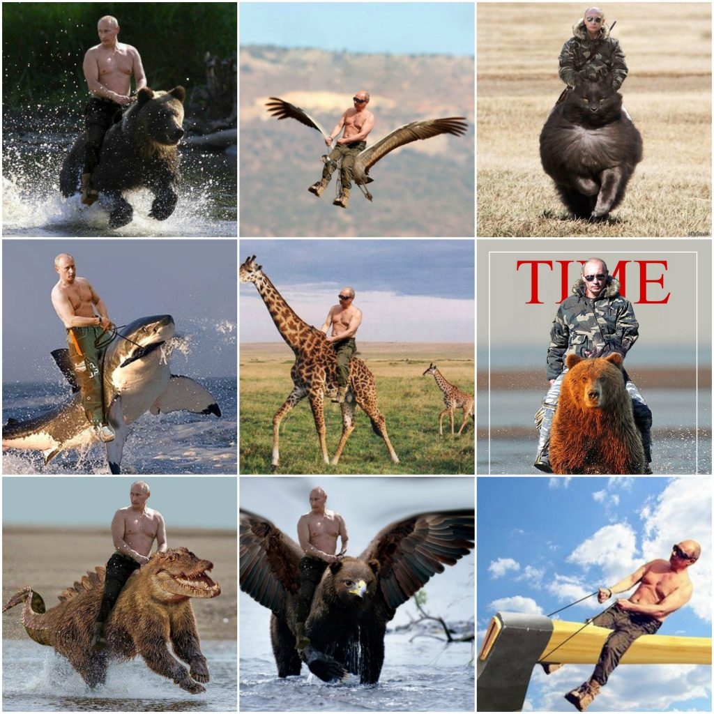 Putin calare Collage